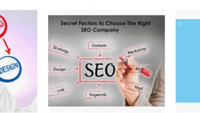 Behind Choosing an SEO Services Company For SEO Promotion!